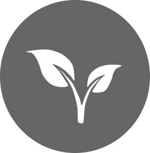 sapling; early career icon