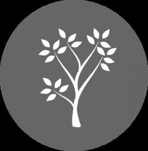 tree; mid career icon